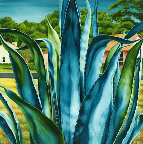 Agave: Hiding Place