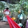 Rosa Weaving #2