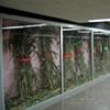 Installation View, Metro Alameda, Left Side
