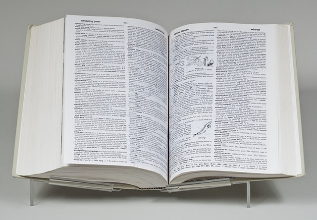 Colorless Dictionary, 1988