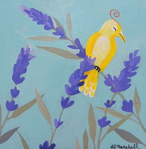 One sweet yellow bird on a lavender plant.