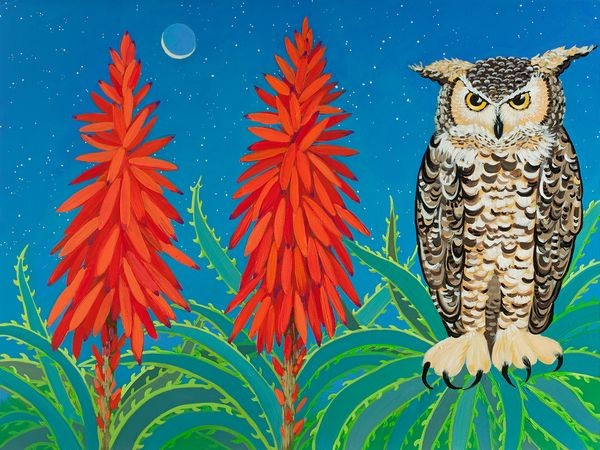 Owl, owls, aloe, night, moon, crescent moon, blue, orange