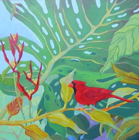 cardinal, Hawaii, hawaiian flowers, monstera plant, hawaiian plants