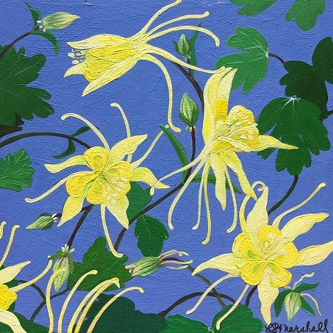 columbine, columbines, yellow, blue violet, floral paintings, columbine paintings, botanicals