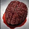 Leaf / Brain
