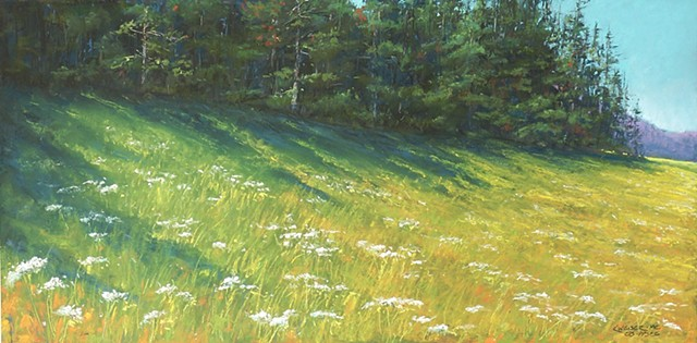 Northern Meadow
