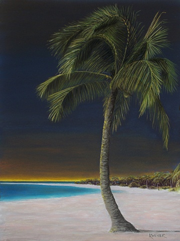 Lone Palm At Night