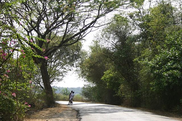 Rural scene, Kerala, India.