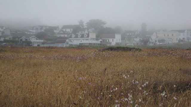 Coastal fog in the town of Mendocino.