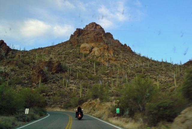 Near Tuscon, Arizona.