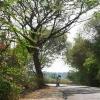 Country Road, Kerala, India.