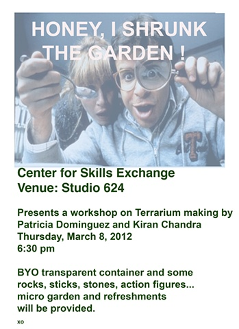 Center for Skills Exchange Terrarium Workshop