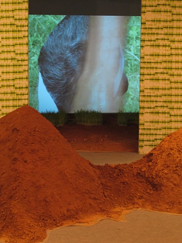 Installation photo at Shrine Empire Gallery, New Delhi  Video Projection in background