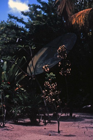 Belize, Slide Film