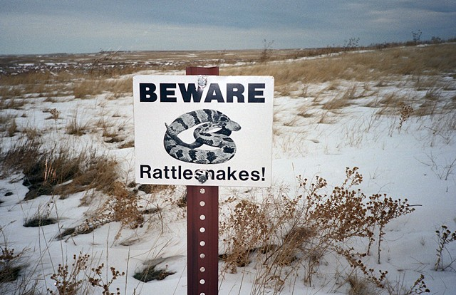 badlands rattlesnakes