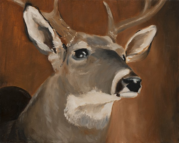 Oil painting, deer, taxidermy painting,