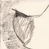 Modigliani VIII