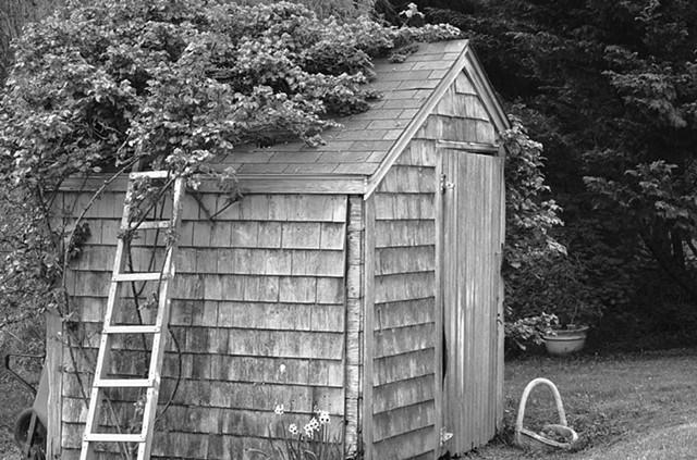 Wellfleet Shed