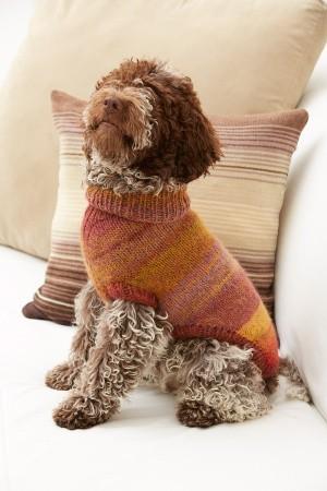 Proud Puppy Dog Sweater