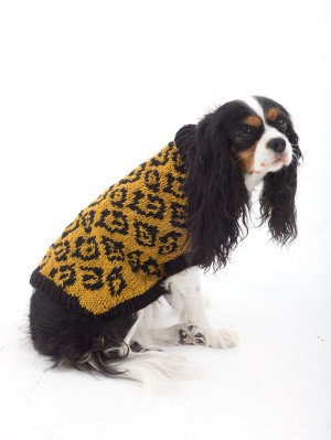The Animal Lover Dog Sweater