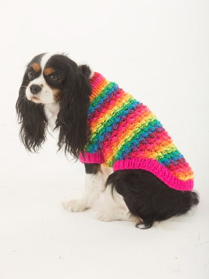 The Proud Supporter Dog Sweater