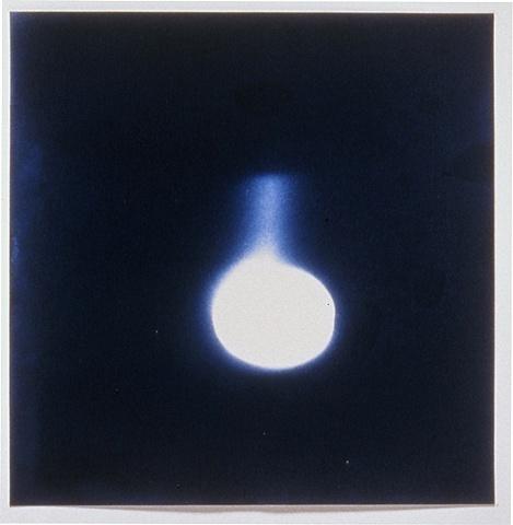 Untitled Photogram, Bottle