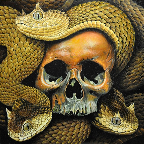 medusa skull with squams