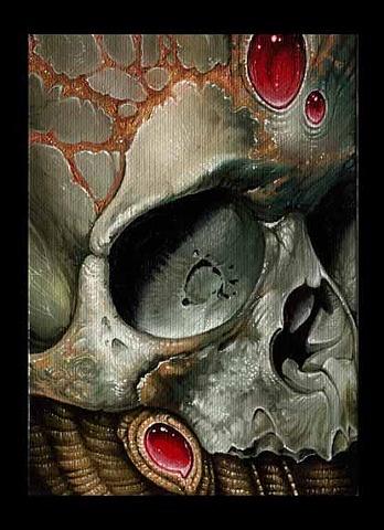 sm bio skull