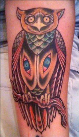 owl baltimore