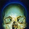 yellow blue skull
