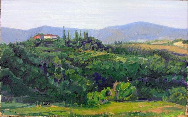 Fattoria Armena, View South,Tuscany,IT