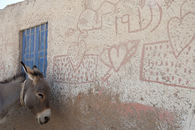 Donkey and Hearts, Gurna