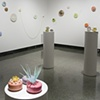 lures, installation view