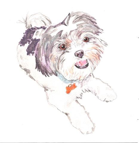 Sketch of Bella