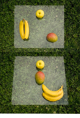 Arrangement of Fruit 1, 2011