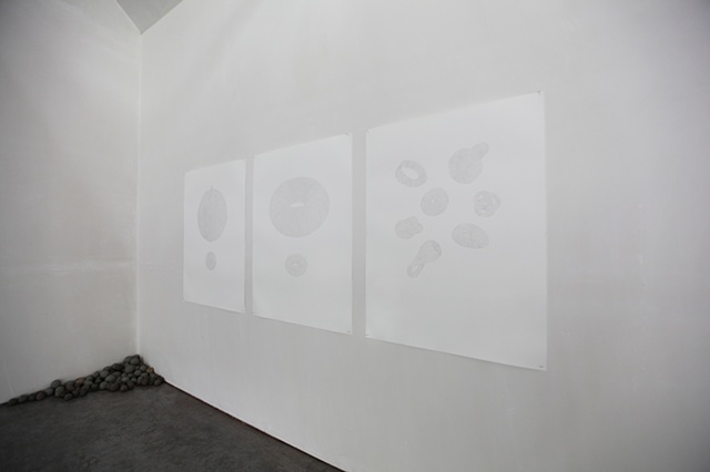 Topologies - installation view