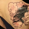 cover up #3