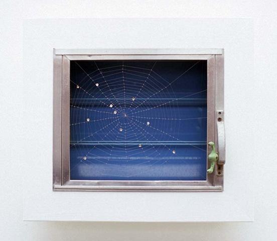 Web of Surveillance