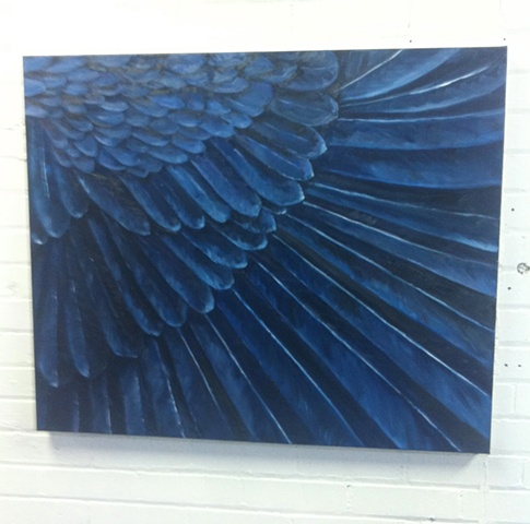 feathers oil