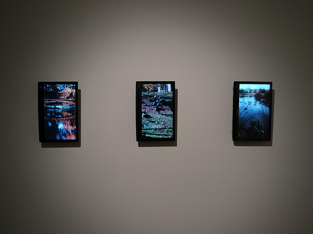 Installation View of Video Triptych