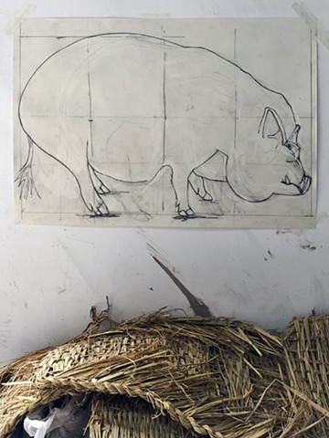 Pig Drawing In Ceramic Studio