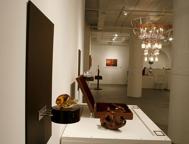 Future Darwinist installation view 9