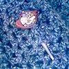 WRAPSODY IN BLUE