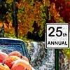 FALL FESTIVAL POSTER 2012