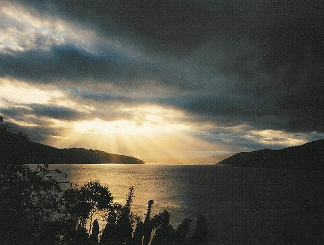 MacAndrew Bay, Dunedin, New Zealand