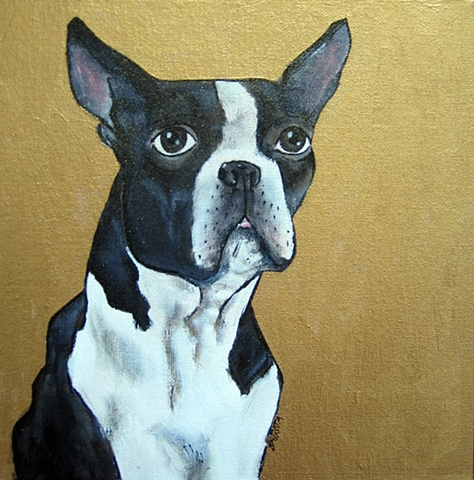 Boston Terrier Portrait on Gold Private Collection