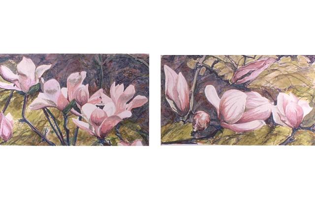 Magnolia Diptych