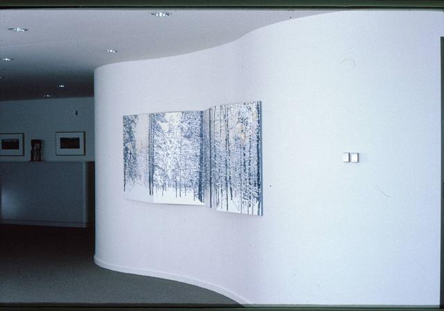 Winter Afternoon Installation