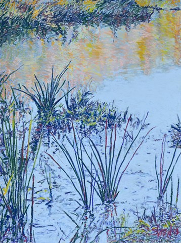 abstractions looking into the pond grasses