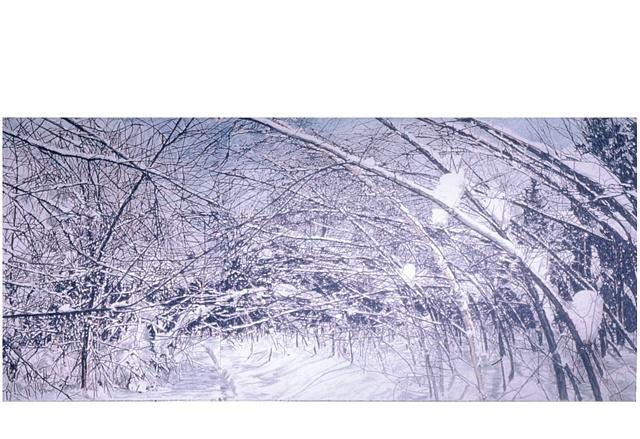 Snow Arches